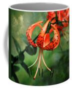 Twin Turks Coffee Mug
