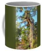 Twirling Tree Path Coffee Mug