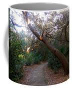 Twisted Oaks 2 Coffee Mug