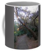 Twisted Oaks 1 Coffee Mug