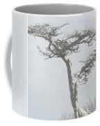 Twisted Tree 2 Coffee Mug