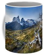 Twisted Tree And Trail Coffee Mug