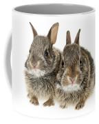Two Baby Bunny Rabbits Coffee Mug