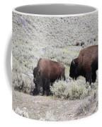 Two Bison Coffee Mug