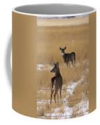 Two Bucks Coffee Mug