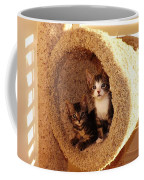 Two Cats In A Condo Coffee Mug
