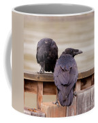Two Common Ravens Corvus Corax Interacting Coffee Mug