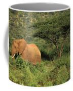 Two Elephants Walking Through The Grass Coffee Mug