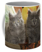 Two Fluffy Kittens Coffee Mug
