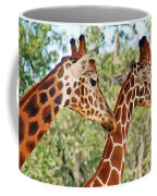 Two Giraffes Coffee Mug