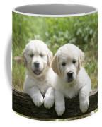 Two Golden Retriever Puppies Coffee Mug