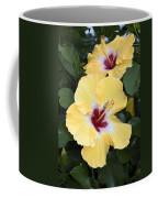 Two Hibiscus Coffee Mug