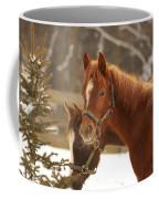 Two Horses In Winter Day Coffee Mug