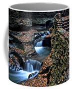 Two Kinds Of Steps Coffee Mug by Frozen in Time Fine Art Photography