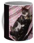 Two Kittens Sleeping Coffee Mug