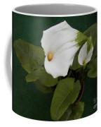 Two Lovely Lilies Coffee Mug