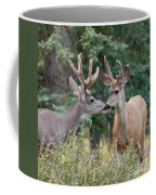 Two Mule Deer Bucks With Velvet Antlers Interact Coffee Mug