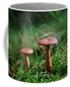 Two Mushrooms Coffee Mug