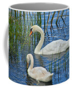 Two Mute Swans Coffee Mug