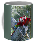Two On A Branch Two Coffee Mug