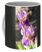 Two Purple Irises Coffee Mug