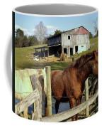Two Quarter Horses In A Barnyard Coffee Mug