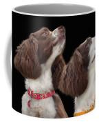 Two Spaniels Coffee Mug