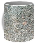 Two-spined Sea Star Coffee Mug