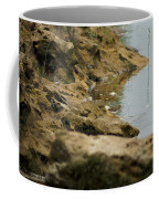 Two Spotted Sandpipers On The Flint Rivers Banks Coffee Mug