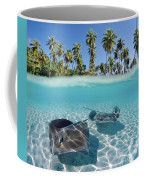 Two Stingrays 1 Coffee Mug