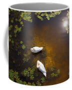 Two Swans With Sun Reflection On Shallow Water Coffee Mug