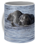 Two Swimming Elephants Coffee Mug