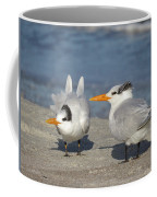 Two Terns Watching Coffee Mug