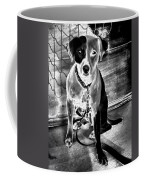 Two Tone Toby-jack Russell Coffee Mug