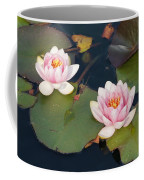 Two Water Lillies Coffee Mug