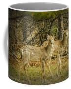 Two White Tailed Deer Coffee Mug