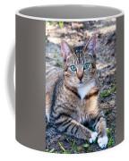 Tyger 3 Coffee Mug