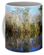 Ultimate Reflection Coffee Mug by Debra Forand