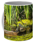 Under Covered Coffee Mug