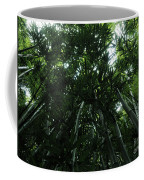 Under The Bamboo Haleakala National Park  Coffee Mug