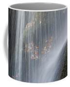 Under The Falls Coffee Mug