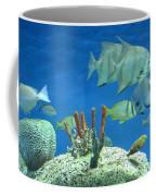 Underwater Beauty Coffee Mug