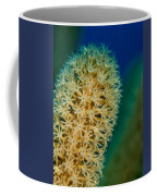 Underwater Gorgonian Coffee Mug