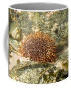 Underwater Shot Of Sea Urchin On Submerged Rocks Coffee Mug