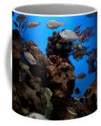 Underwater View Coffee Mug