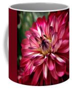 Burgundy Dahlia II Coffee Mug