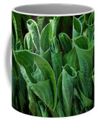 Unfurling Of The Hosta Coffee Mug