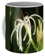 Beauty All Around Us Coffee Mug