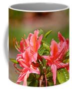 Unmarred Coffee Mug