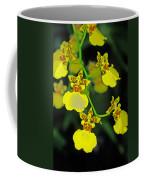 unnamed hybrid Orchid  Coffee Mug